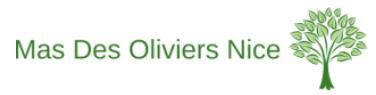 masdesoliviers-nice.com
