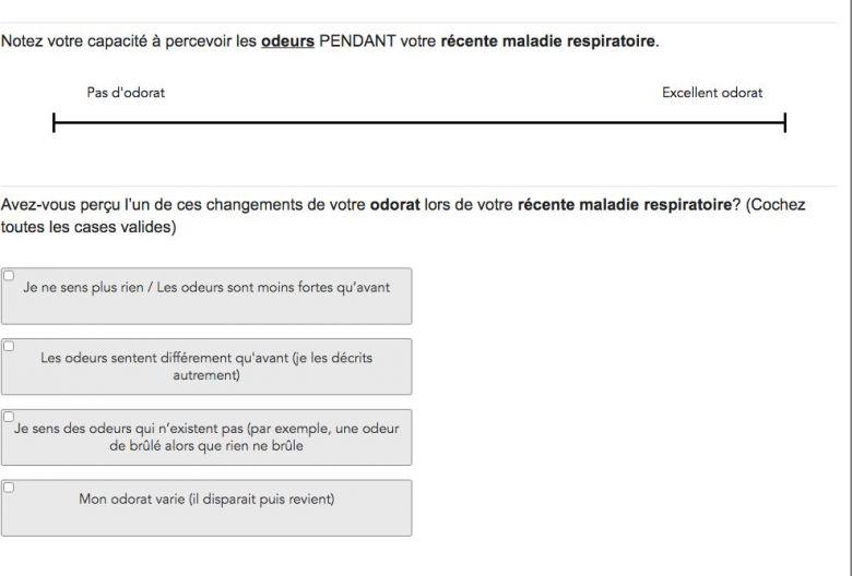 Extrait du questionnaire en ligne. / © Consortium mondial pour la recherche chémosensorielle.