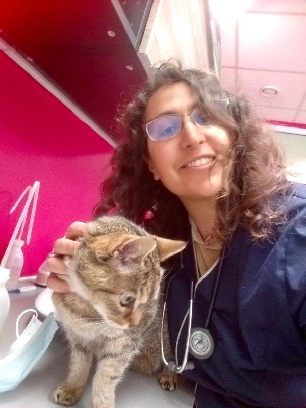 Judith Chachoua est vétérinaire.